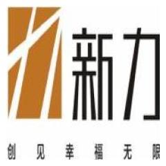 广州新力力创房地产开发有限公司