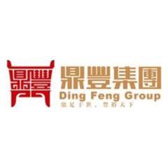 广西鼎丰投资集团有限公司