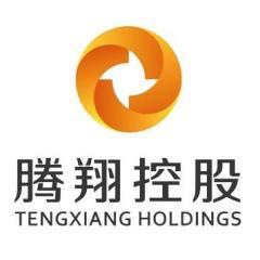 腾翔(中国)控股集团有限公司