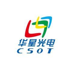 武汉华显光电技术有限公司