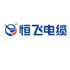 长沙恒飞电缆有限公司