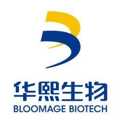 北京华熙海御科技有限公司