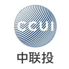 中联投控股