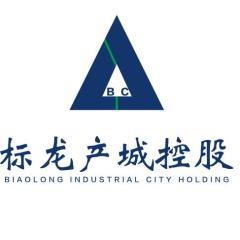 江苏标龙产业新城开发有限公司