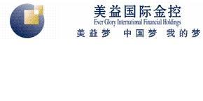 上海美益国际金融投资控股有限公司