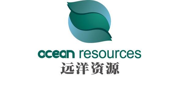 陕西远洋有色资源有限公司