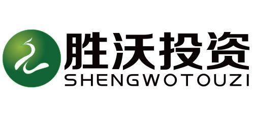 南京胜沃投资管理有限公司