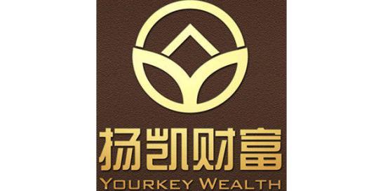上海扬凯投资管理有限公司宁波分公司