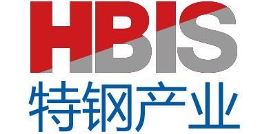 青岛海尔特种钢板研制开发有限公司