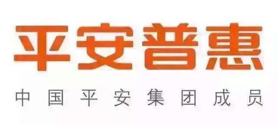 平安普惠投资咨询有限公司广州珠江东路第二分公司