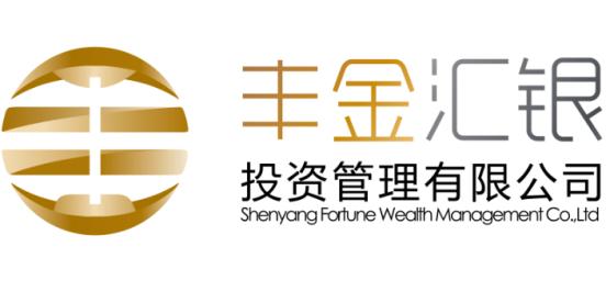 沈阳丰金汇银投资管理有限公司