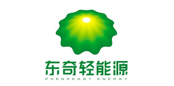 广西东奇能源技术有限公司