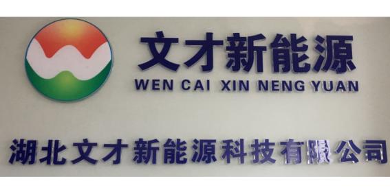 湖北文才新能源科技有限公司