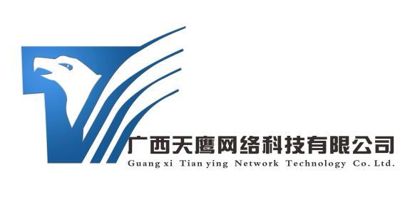 广西天鹰网络科技有限公司