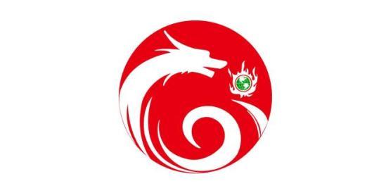 河南龙点信息技术有限公司