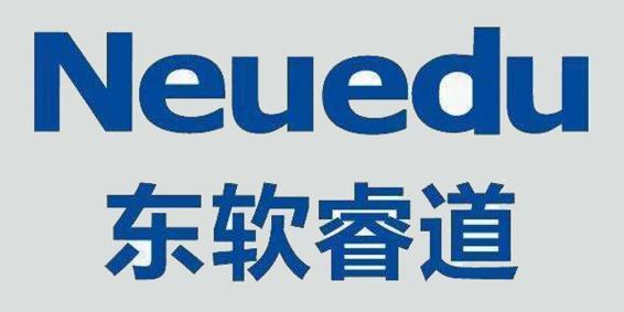 大连东软睿道教育信息服务公司
