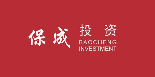 珠海横琴保成投资管理有限公司广州分公司
