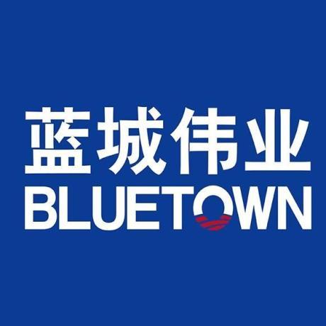 蓝城伟业建设管理集团有限公司