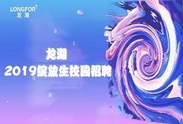 龙湖2019校招