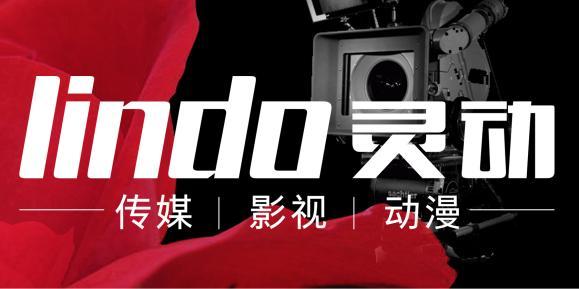 河南灵动传媒文化事业有限公司