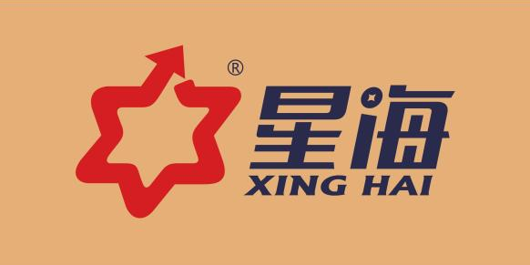 湛江市星海资产管理有限公司