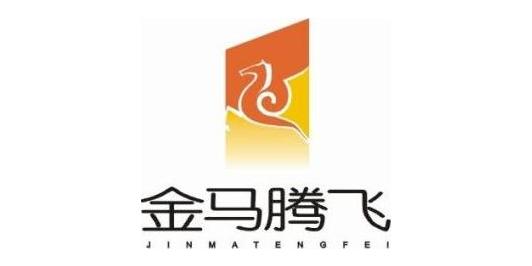 安庆金马房地产开发集团有限公司