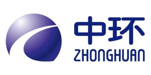 天津中环电子信息集团有限公司
