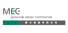 新疆蒙科能源科技有限公司