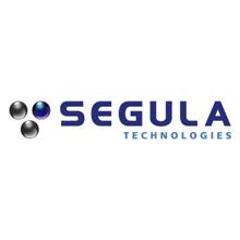 法国赛科技术工程集团中国总公司
