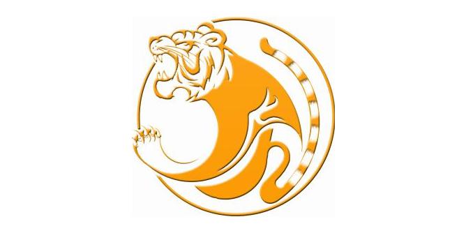 湖南金虎再生资源产业集团有限公司
