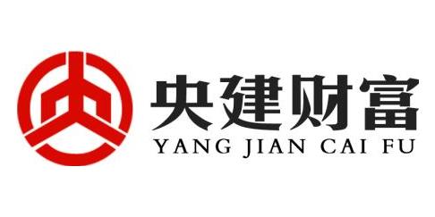 央建财富集团股份有限公司