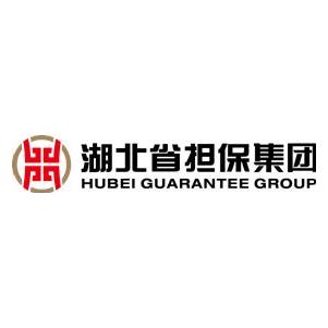 湖北省担保集团有限责任公司