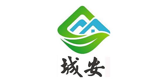 山东城安实业有限公司