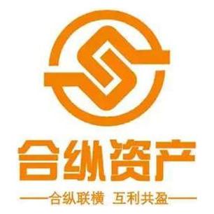 深圳前海合纵资产管理有限公司