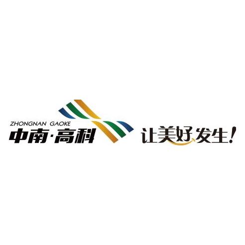 中南集团-中南高科