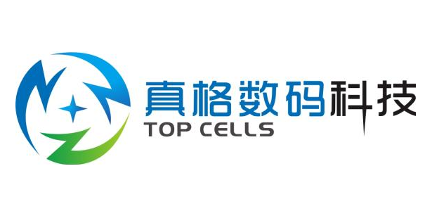 上海真格数码科技有限公司