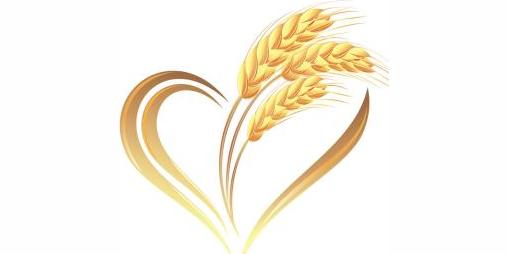 广州乡麦餐饮管理有限公司