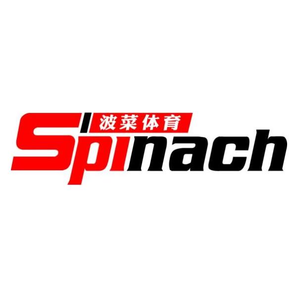桂林波菜体育发展有限公司