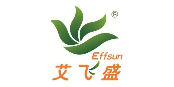 深圳市艾飞盛新能源有限公司