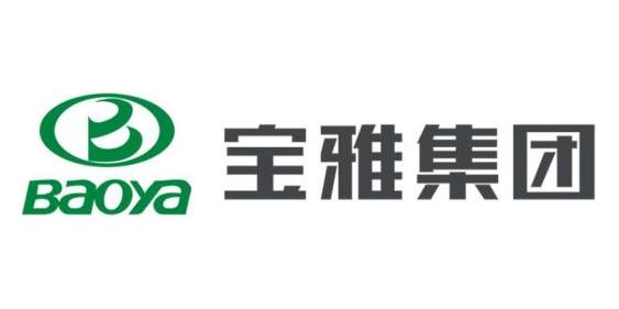 山东宝雅新能源汽车股份有限公司
