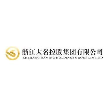 浙江大名控股集团有限公司