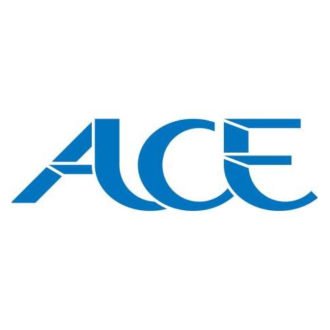 广州ACE集团