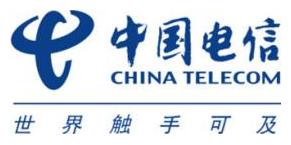 中国电信集团系统集成有限责任公司山东分公司