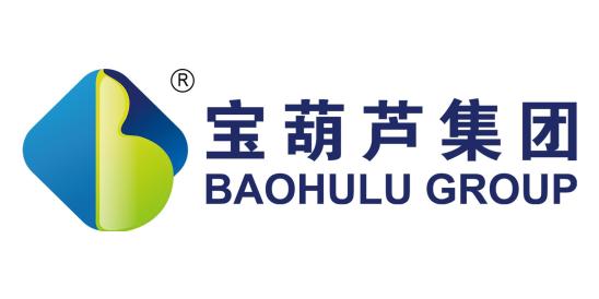 安徽宝葫芦信息科技集团股份有限公司