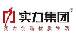 云南实力房地产开发经营集团有限公司