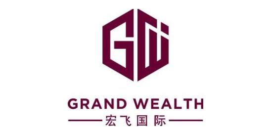 宏飞国际投资咨询(深圳)有限公司