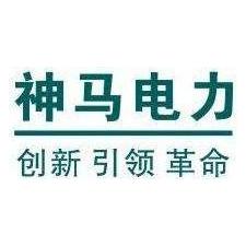 上海神马电力控股有限公司