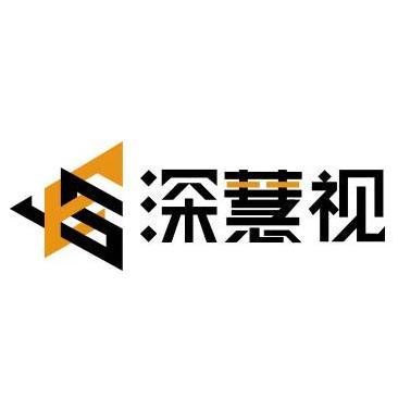 深慧视(深圳)科技有限公司