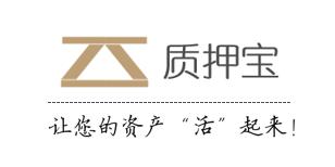 深圳质押宝金融服务有限公司