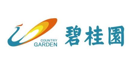 碧桂园营销中心-安徽区域